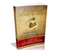 Holistic Guide